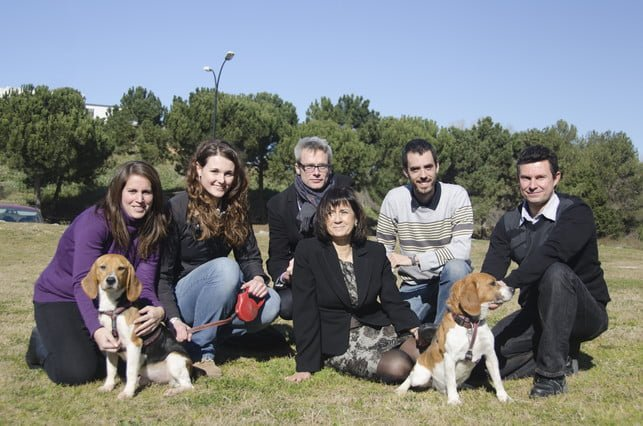 A equipe espanhola que curou o diabetes dos cachorrinhos Beagle. No centro, Fàtima Bosch, a líder do projeto. Foto: Pierre Caufapé