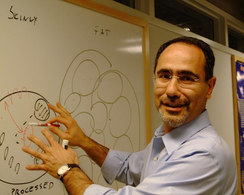 O pesquisador Gokhan Hotamisligil, da Universidade de Harvard, foi um dos envolvidos na descoberta da proteína aP2.