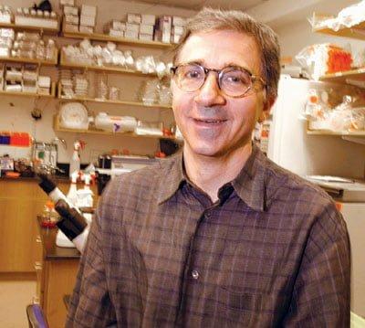 O co-diretor do Instituto de Células-Tronco da Universidade de Harvard, Douglas Melton.