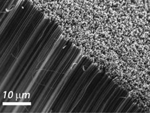 Os nanotubos de carbono são estruturas finíssimas e prometem revolucionar várias áreas, inclusive a de diagnósticos médicos.