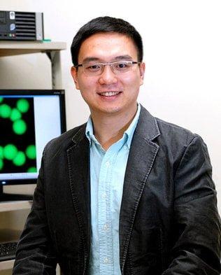 """O cientista Zhen Gu, da Universidade da Carolina do Norte, é um dos principais autores do estudo com a """"esponja inteligente""""."""