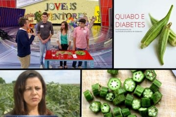 coletânea de textos sobre quiabo diabetes