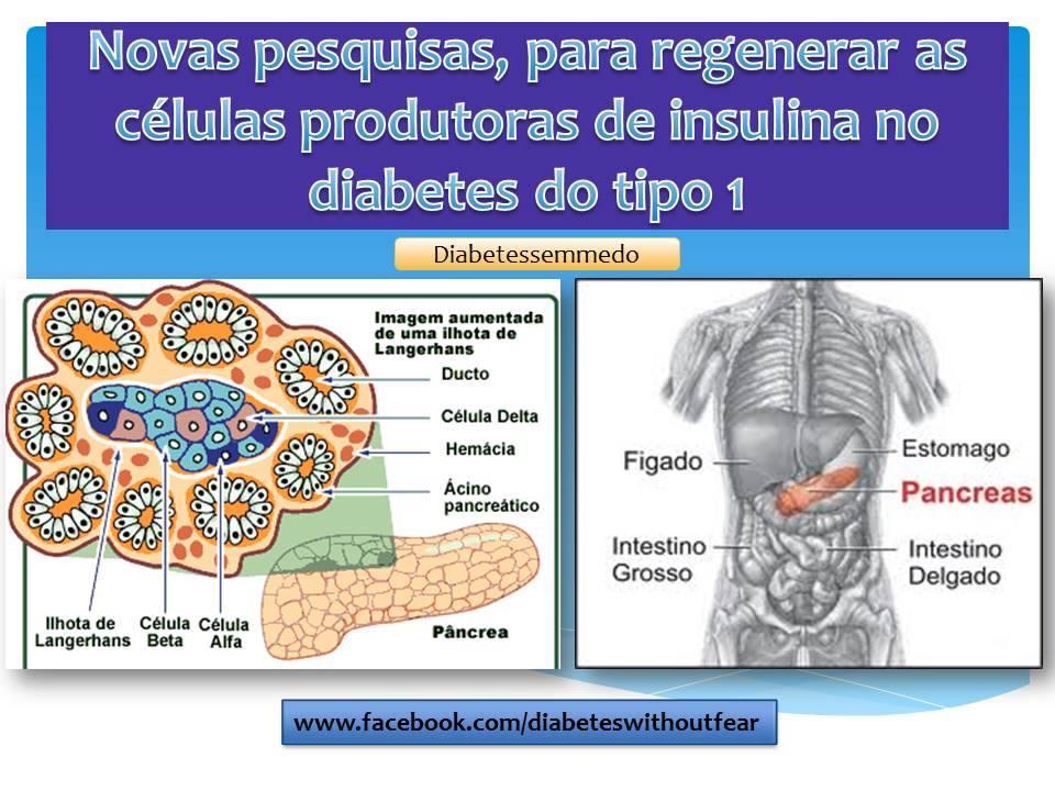 dieta de diabetes collombat