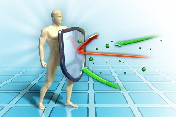 sistema imune diabetes tipo 1