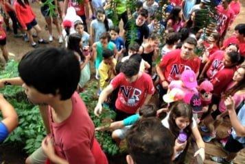 acampamento de diabetes nas férias escolares 1